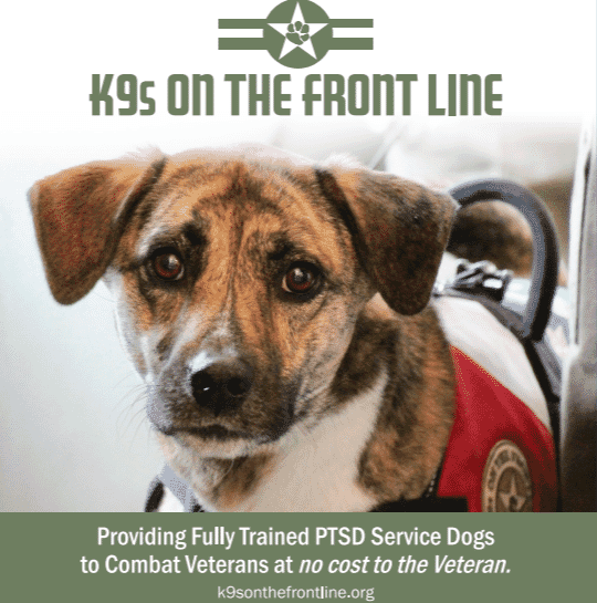 PTSD Service Dogs for Combat Veterans