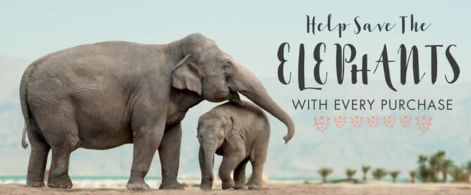 Save the elephants campaign design