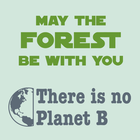 21 Eco Friendly Quotes & Earth Day Sayings that Promote Sustainability