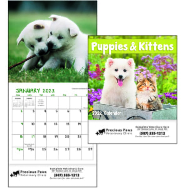 2021 Puppies & Kittens Calendar - Mini