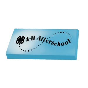 Blue and white eraser with black logo