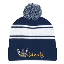 Blue and white top pom beanie