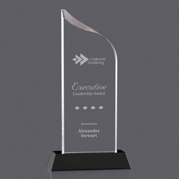 Professional Glass Award