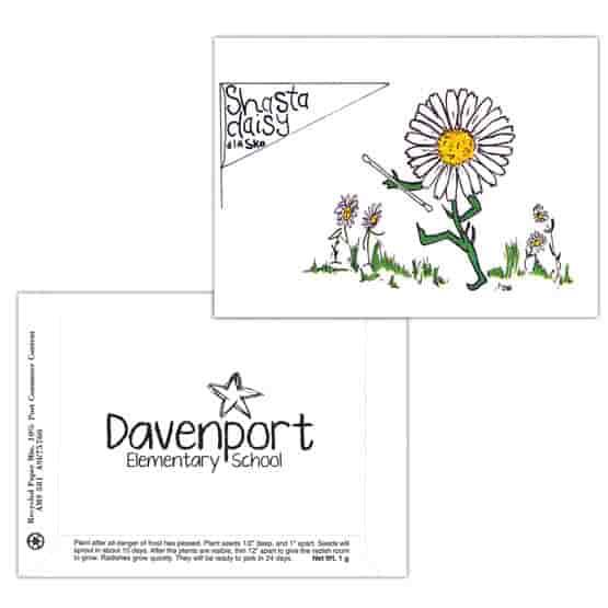 Dorothy's Kids Series Seed Packet- Shasta Daisy