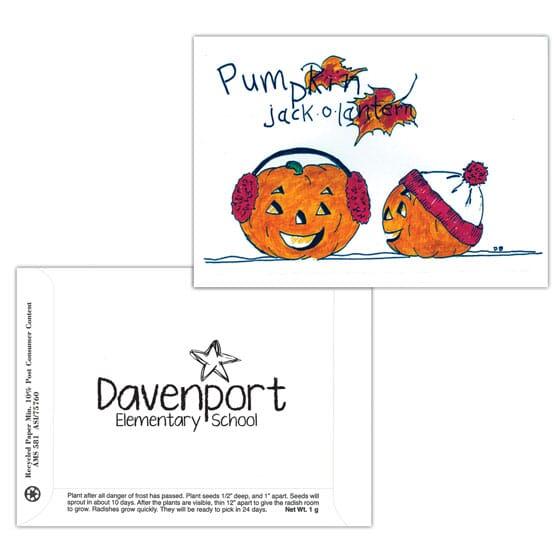 Dorothy's Kids Series Seed Packet- Pumpkin