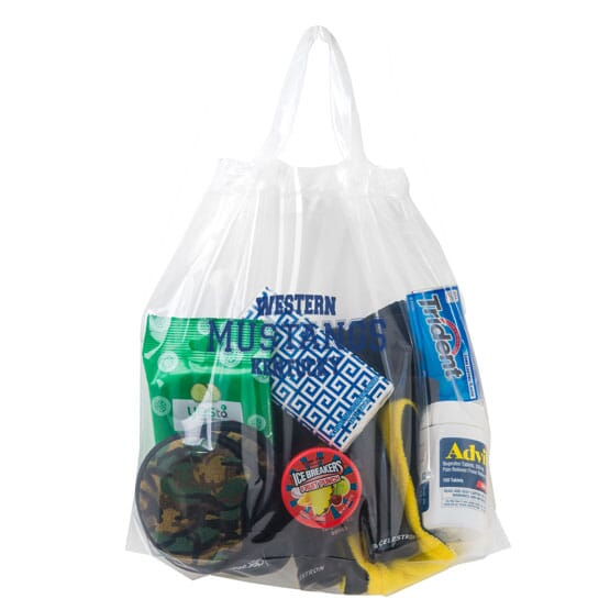 """12"""" x 12"""" x 6"""" Secured Clearance Draw Tape Plastic Bag"""