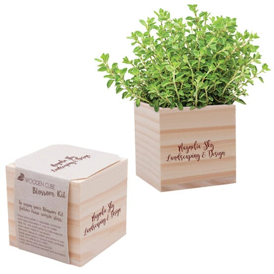 Wooden planter with seeds set