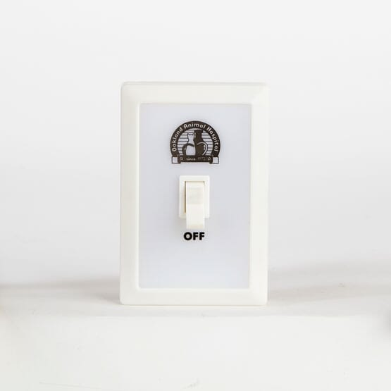 Bright Smile Wall Light