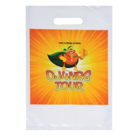 9 x 13 Full Color Plastic Bags