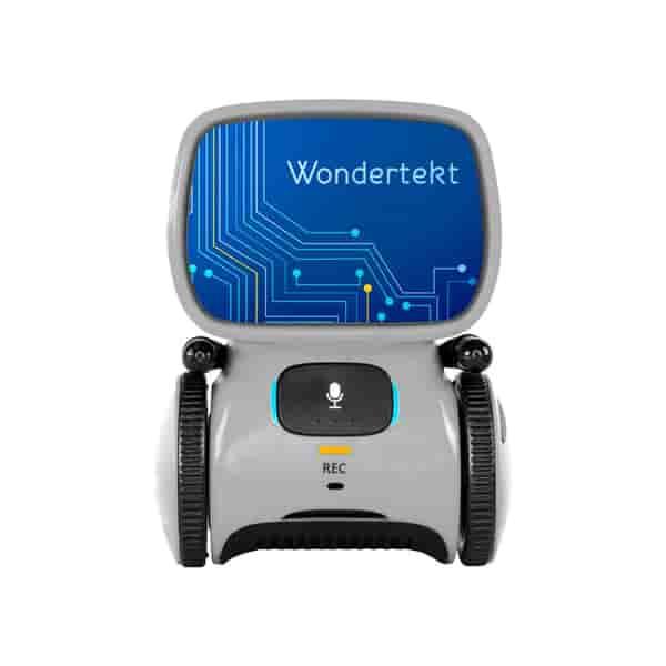 Aaytee™ Voice-Activated Robot