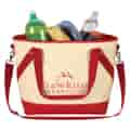 Cooler bag with contents showing.