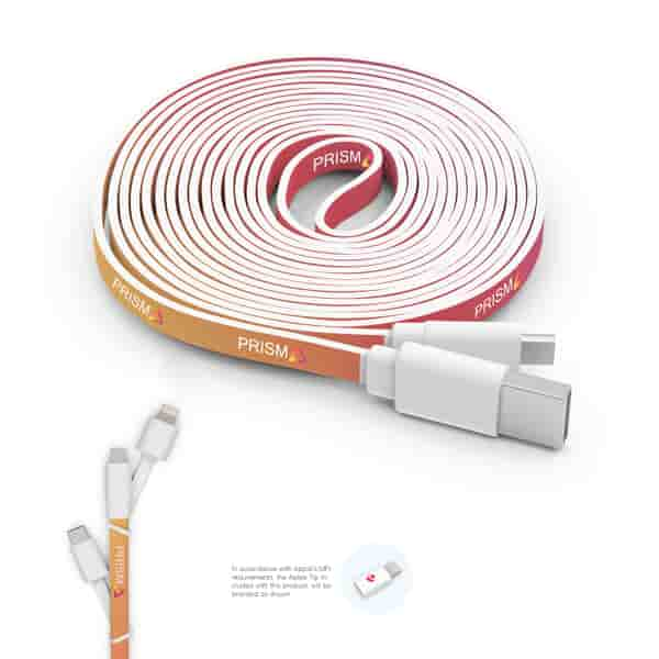 10 Foot Branded Triple Tip Cable