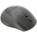 Angled view of mouse
