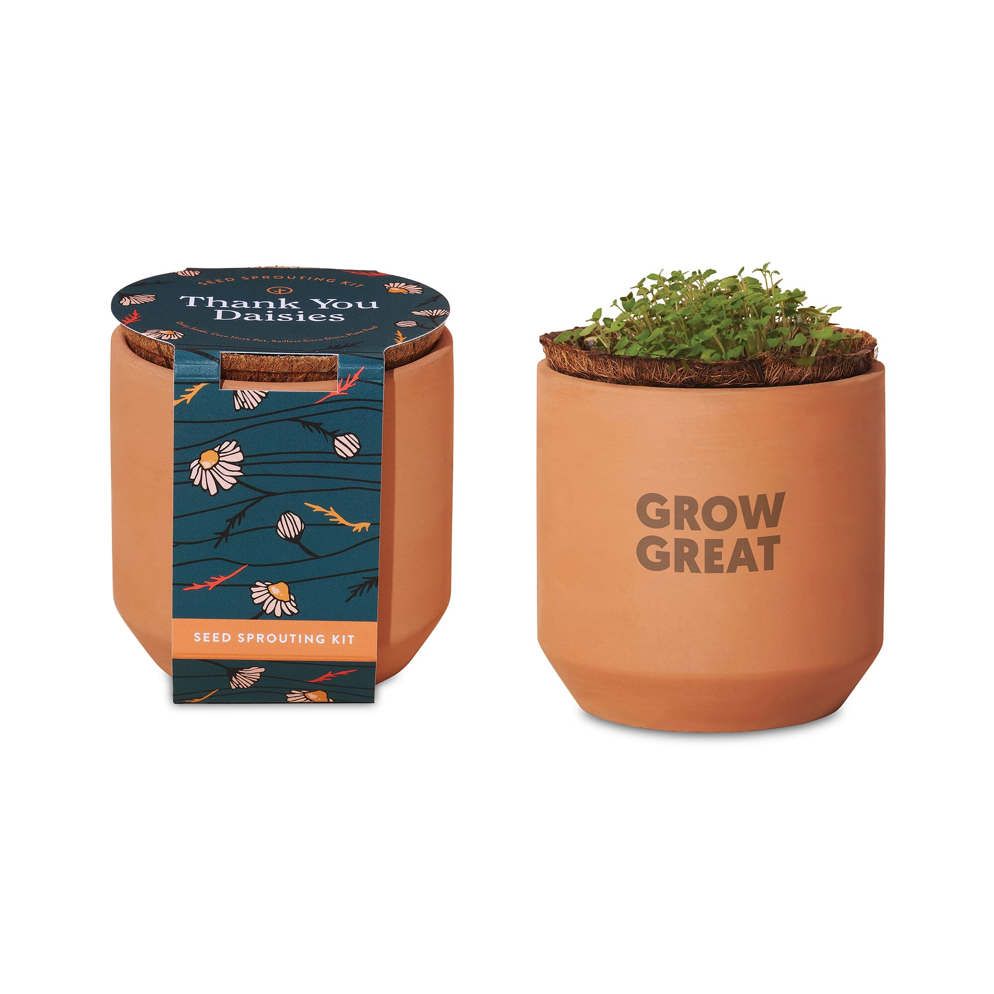Modern Sprout® Tiny Terracotta Grow Kit